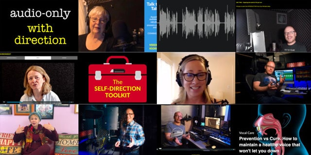 Voiceover training programmes